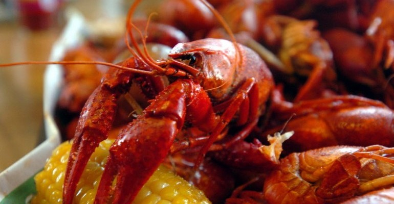 SMAC to Host Annual Crawfish Festival