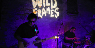 Wild Frames take a walk on the wild side