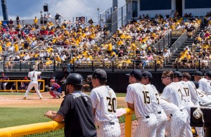 Golden Eagles watch the game from the  dugout